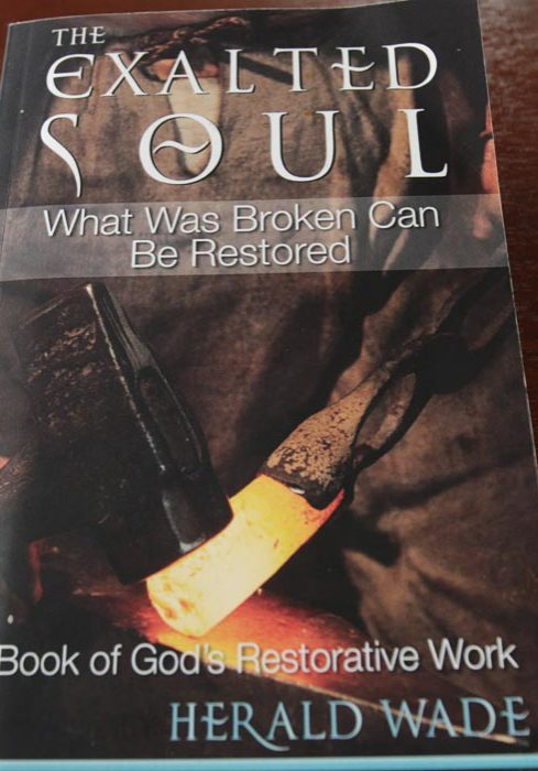 Exalted Soul Book Cover